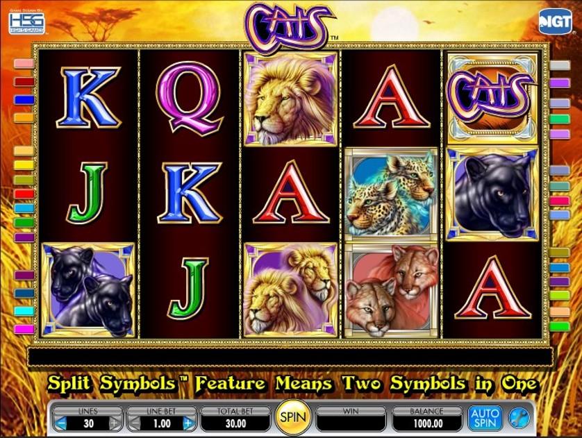 Blog sul gioco slot 80685